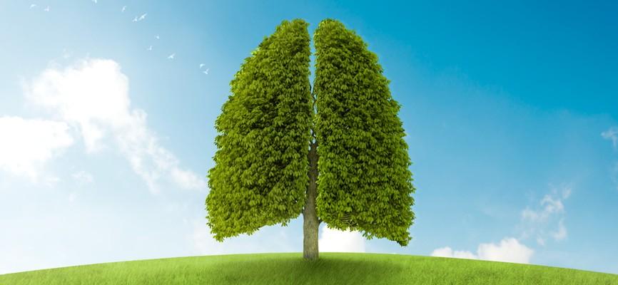 Система вентиляции и концентрация кислорода в помещении